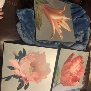 Floral Pictures
